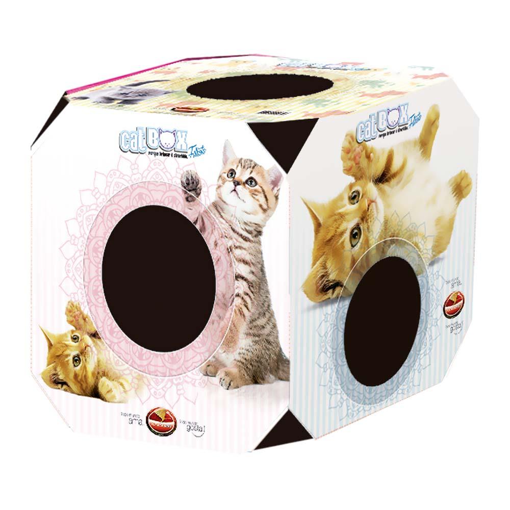 Cat box filhote Furacão Pet
