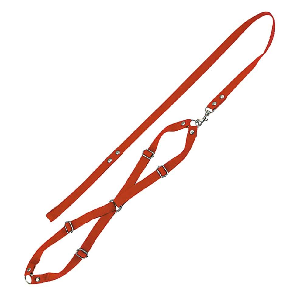 Conjunto Guia de seda com peitoral para cães Furacão Pet - n3 - médio