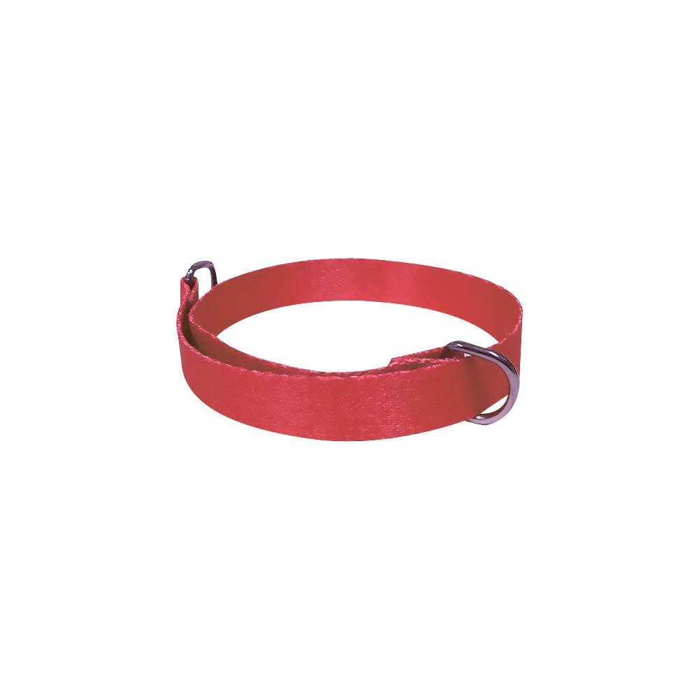 Enforcador de fita para cachorro Furacão Pet 40 cm - 15 mm