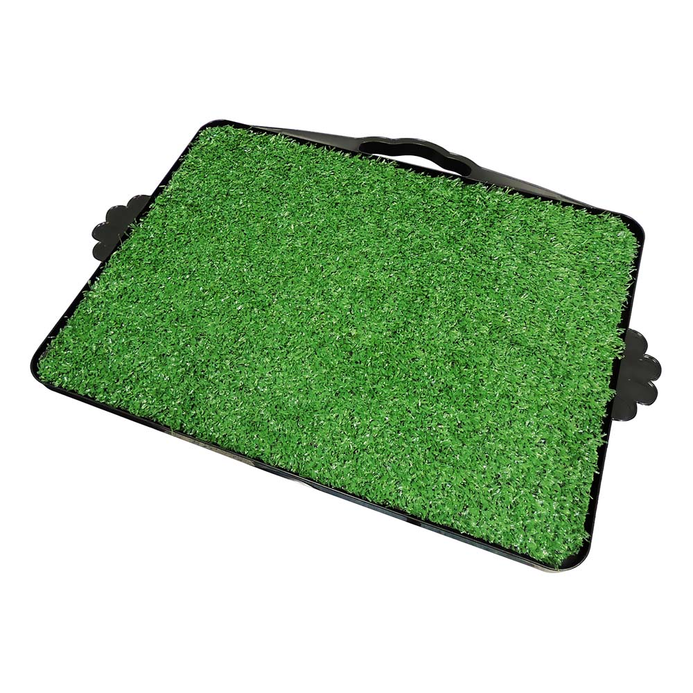 Dog Toalete - Sanitário Higiênico Furacão Pet - com grama verde